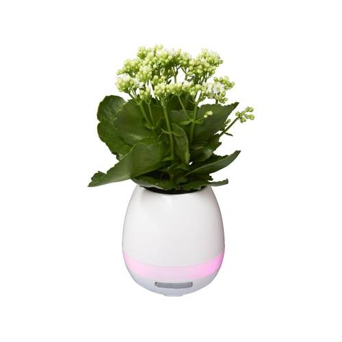 Динамик «Green Thumb Flower Pot» с Bluetooth®
